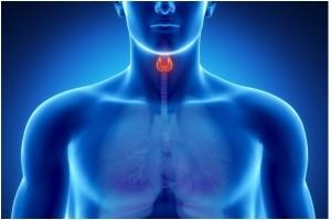 Профилактика йододефицитных заболеваний